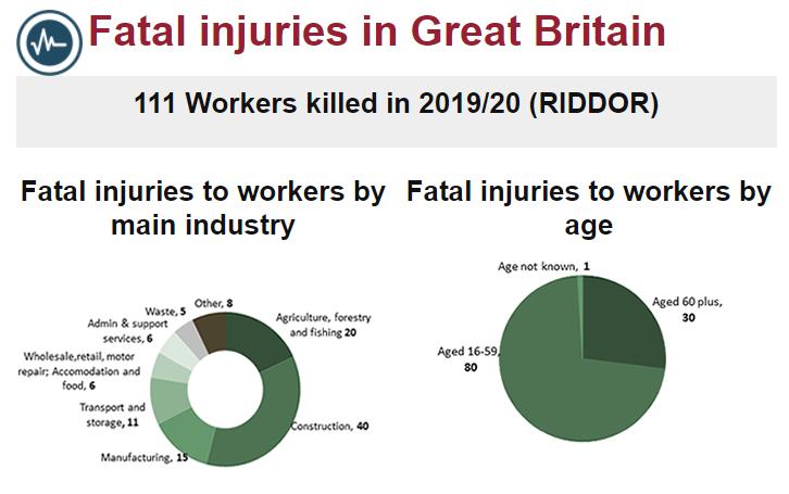 Fatal injury stats